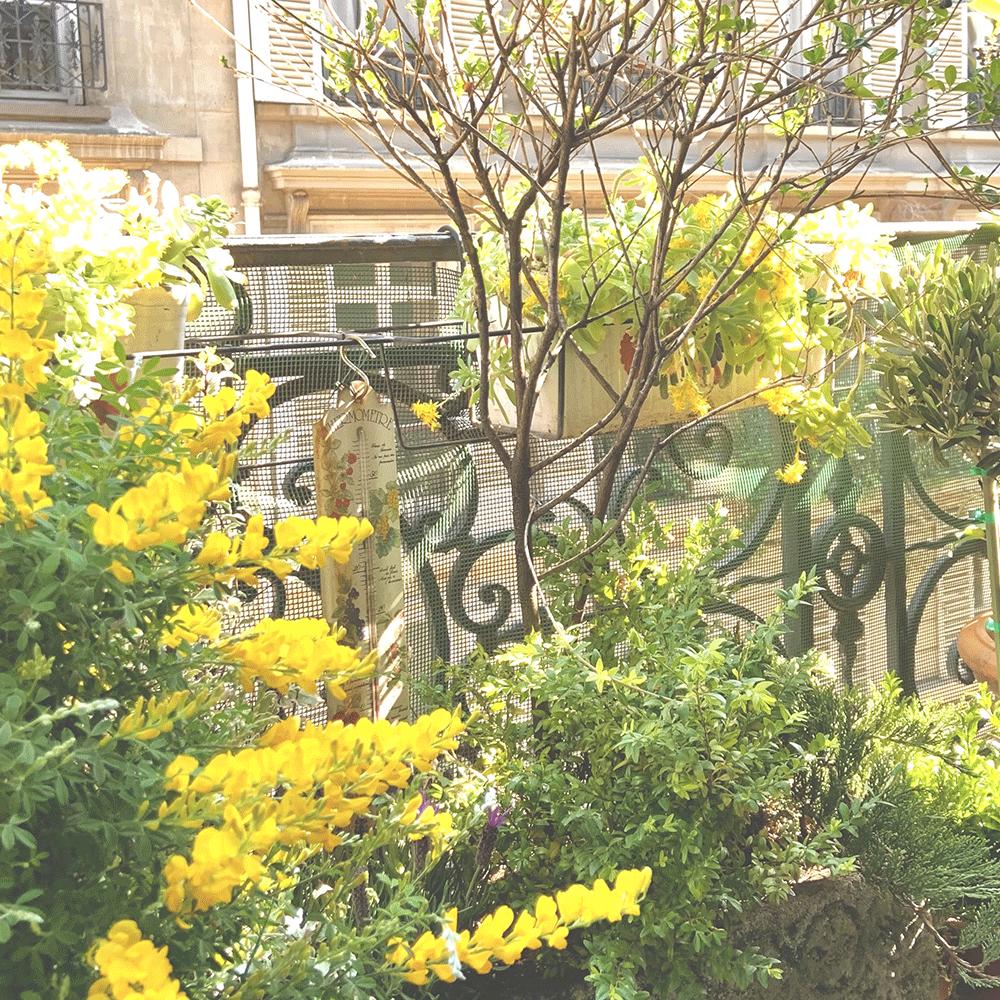 Le balcon italien (17è)